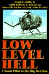 Bookcover: Low Level Hell